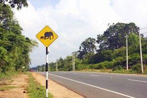 Straßenschild von Colombo nach Dambulla