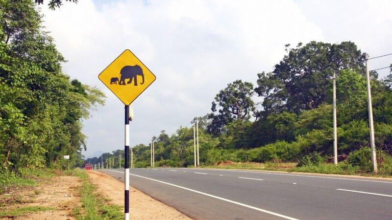 Straßenschild von Colombo nach Dambulla © Diamir