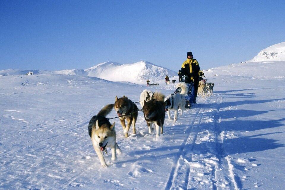 Durch die Weiten des schwedischen Hochfjells