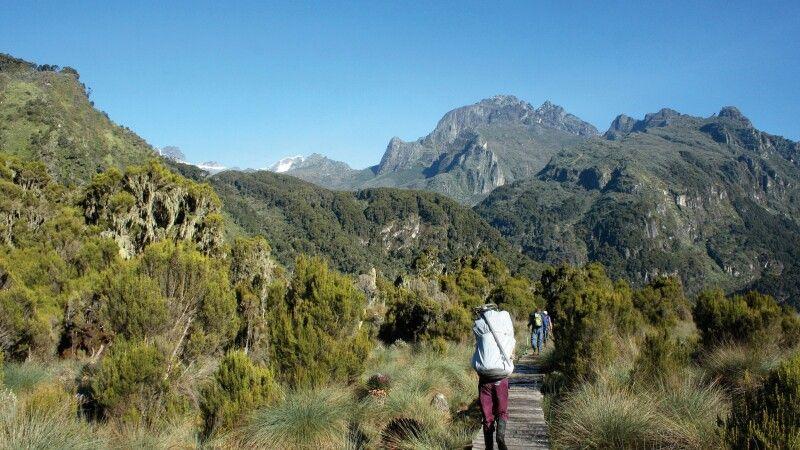 Marsch in die Ruwenzori Berge © Diamir