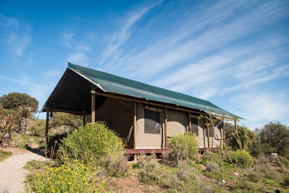 Luxuriöse Zeltunterkunft in der Buffelsdrift Game Lodge