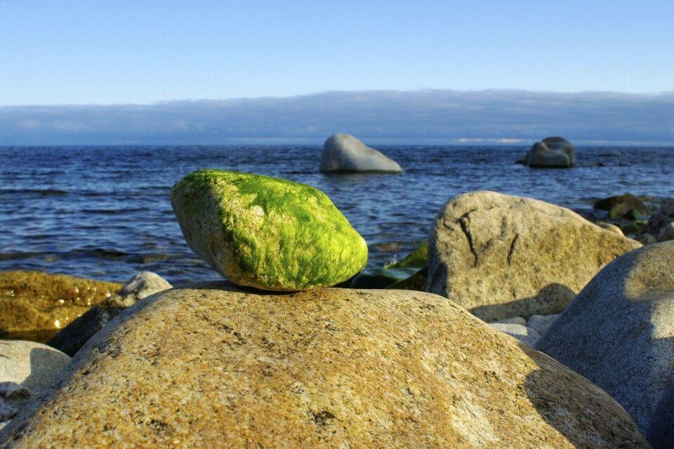 Am Ufer des Baikal