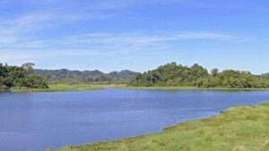 Im Nam-Cat-Tien-Nationalpark