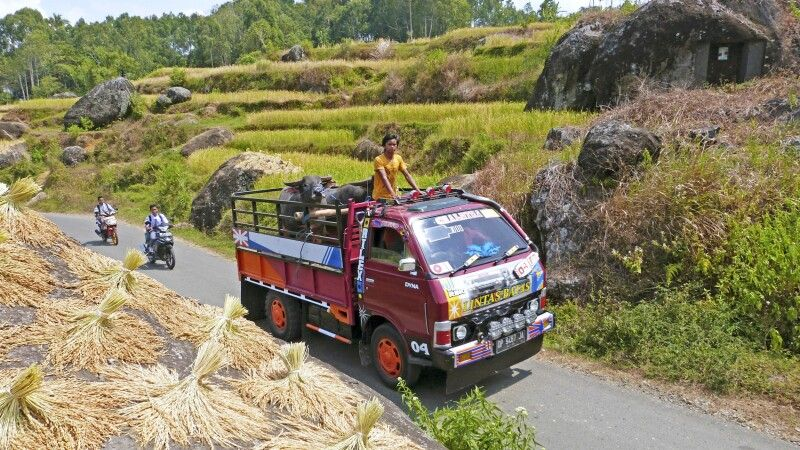 Public Transport in Toraja © Diamir