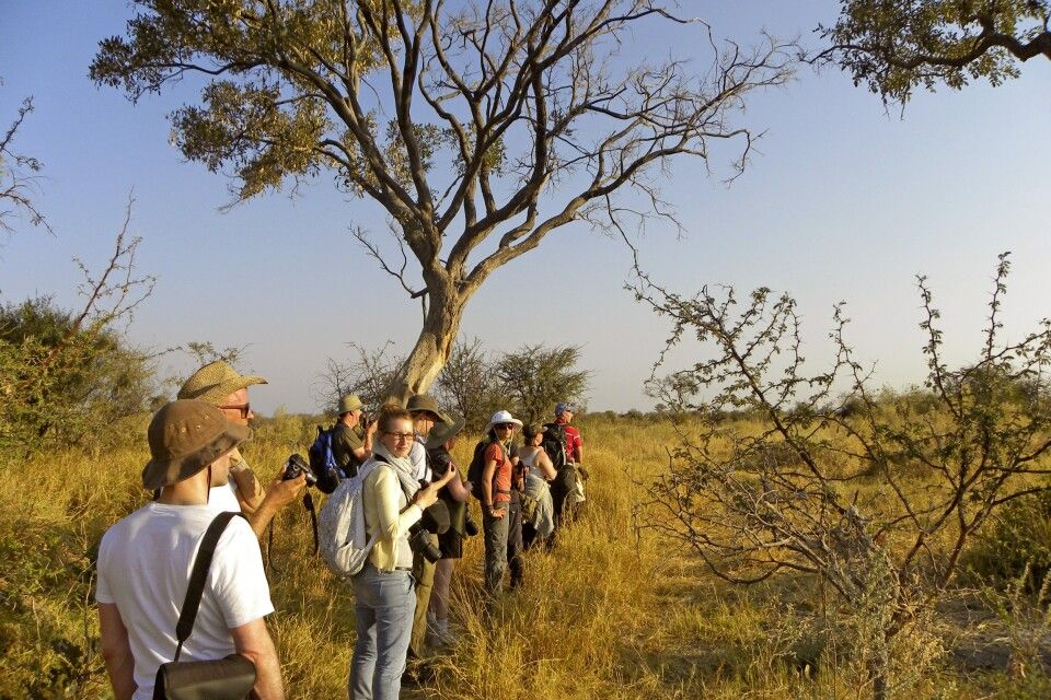 Okavango-Delta, Fupßirsch