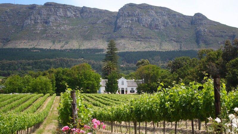 Weinland um Stellenbosch © Diamir