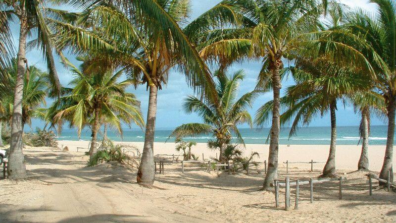 Palmenstrand am Indischen Ozean © Diamir