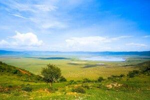 Blick auf das satte Grün des Ngorongoro Kraters in der Regenzeit