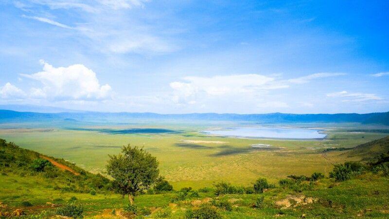 Blick auf das satte Grün des Ngorongoro Kraters in der Regenzeit © Diamir
