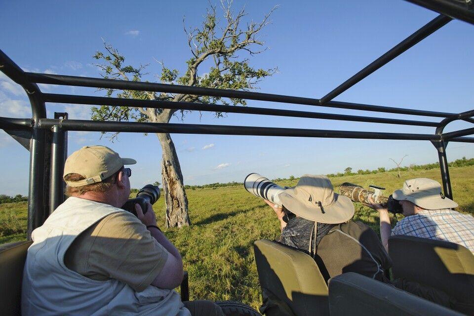 Auf Pirsch im Okavango Delta