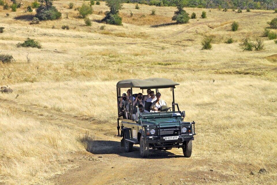 Auf Pirsch in Botswana