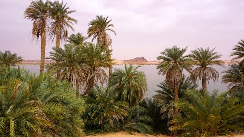 Ounianga-Seenplatte © Diamir
