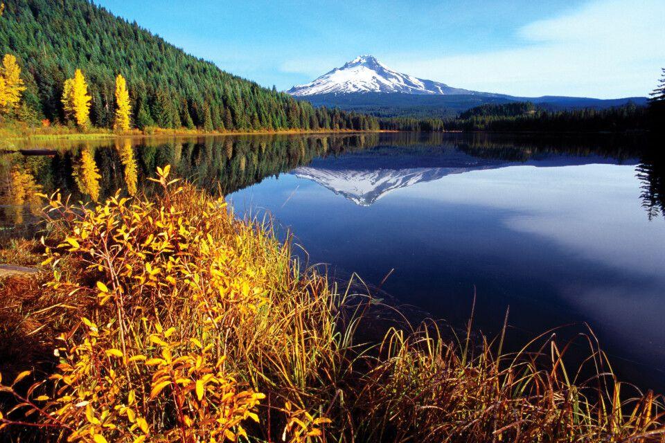 Der herbstliche Mount Hood spiegelt sich im Trillium Lake, Oregon