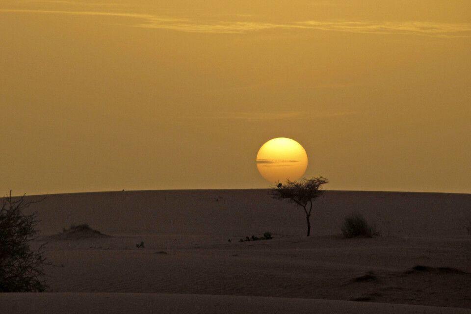 Abendstimming in der Wüste Mauretaniens
