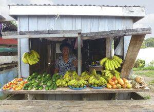 Marktstand bei Suva