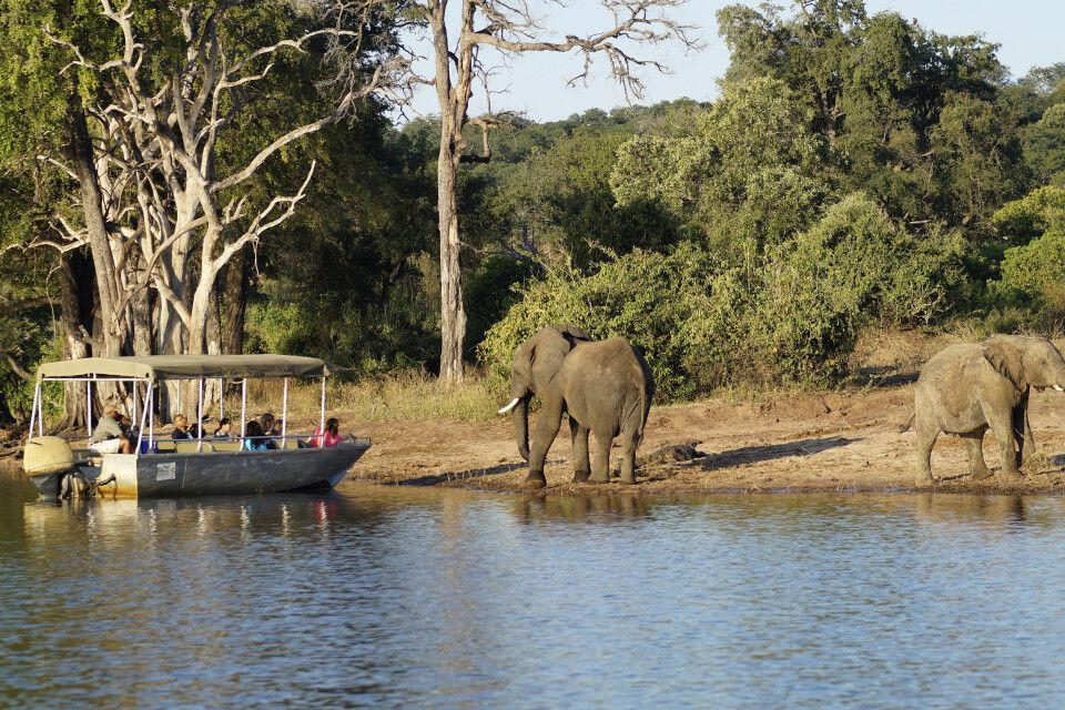 Bootsfahrt auf dem Chobe