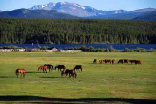 Ausblick von der Terra Nostra Guest Ranch