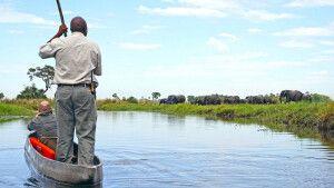 Im Mokoro das Moremi-Wildreservat durchqueren