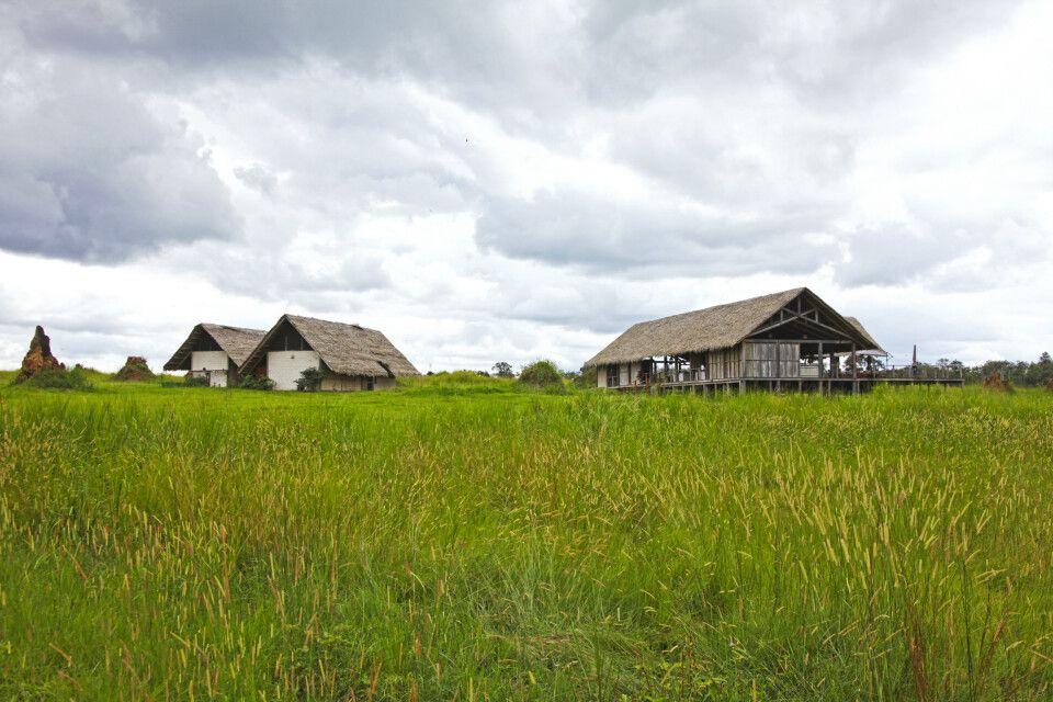 Odzala-Kokoua-Nationalpark, Mboko Camp