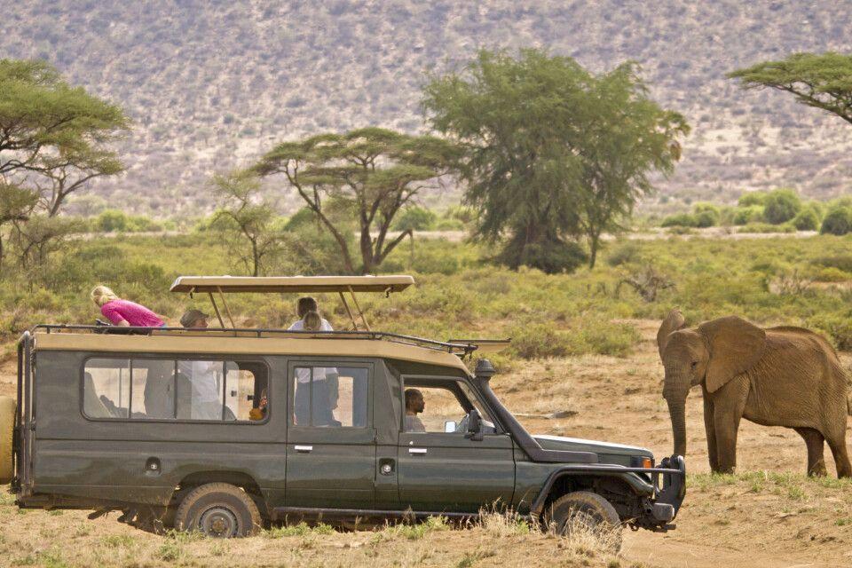 Safarifahrzeug
