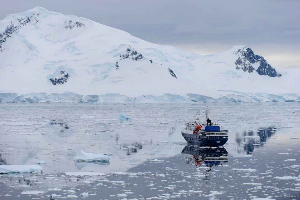 Ortelius, Paradise Harbour, Antarktische Halbinsel