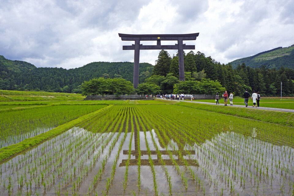 beeindruckendes Torii am Kumano Kodo Taisha