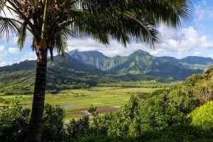 Blick auf das Tal von Hanalei, Kauai