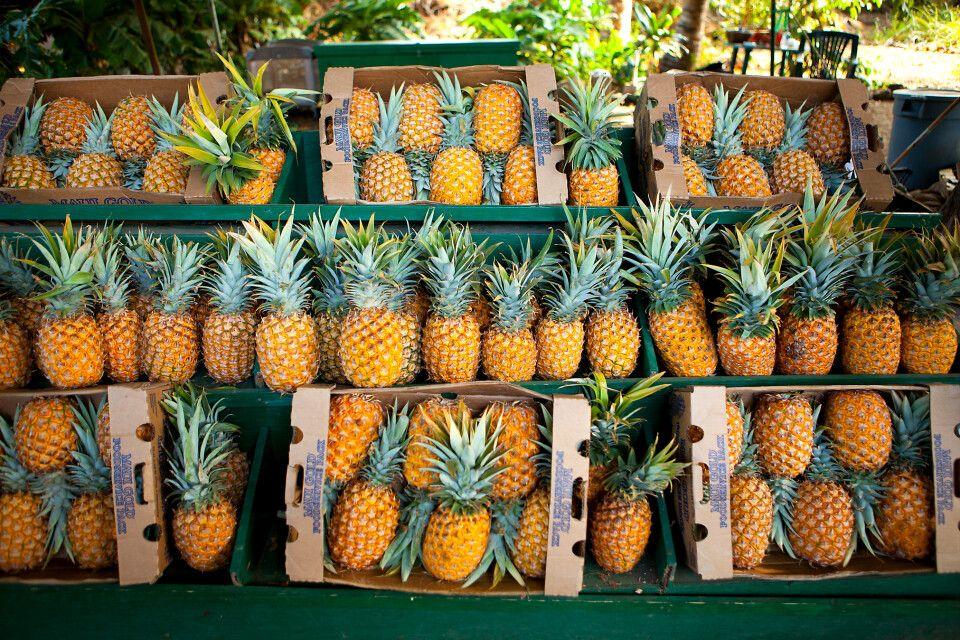 Ananas-Stand,Olowalu, Maui