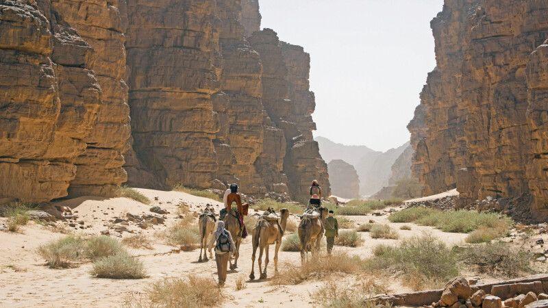 mit dem Kamel durch die Canyons der Sahara © Diamir
