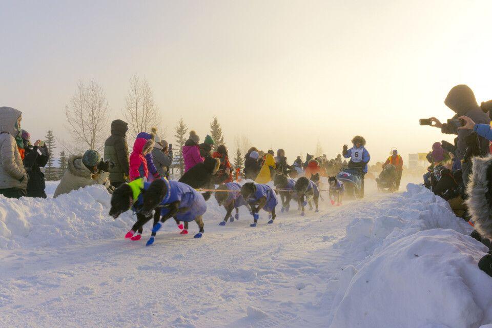 Beim Start des Yukon Quest in Whitehorse